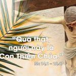 CN.Lễ Lá.B